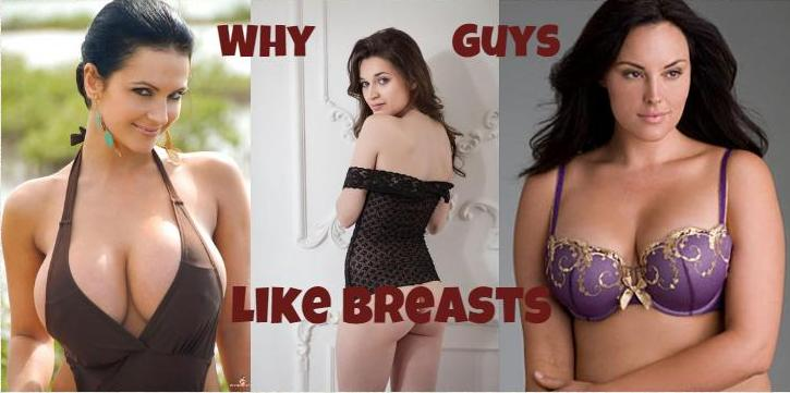 Why guys like boobs