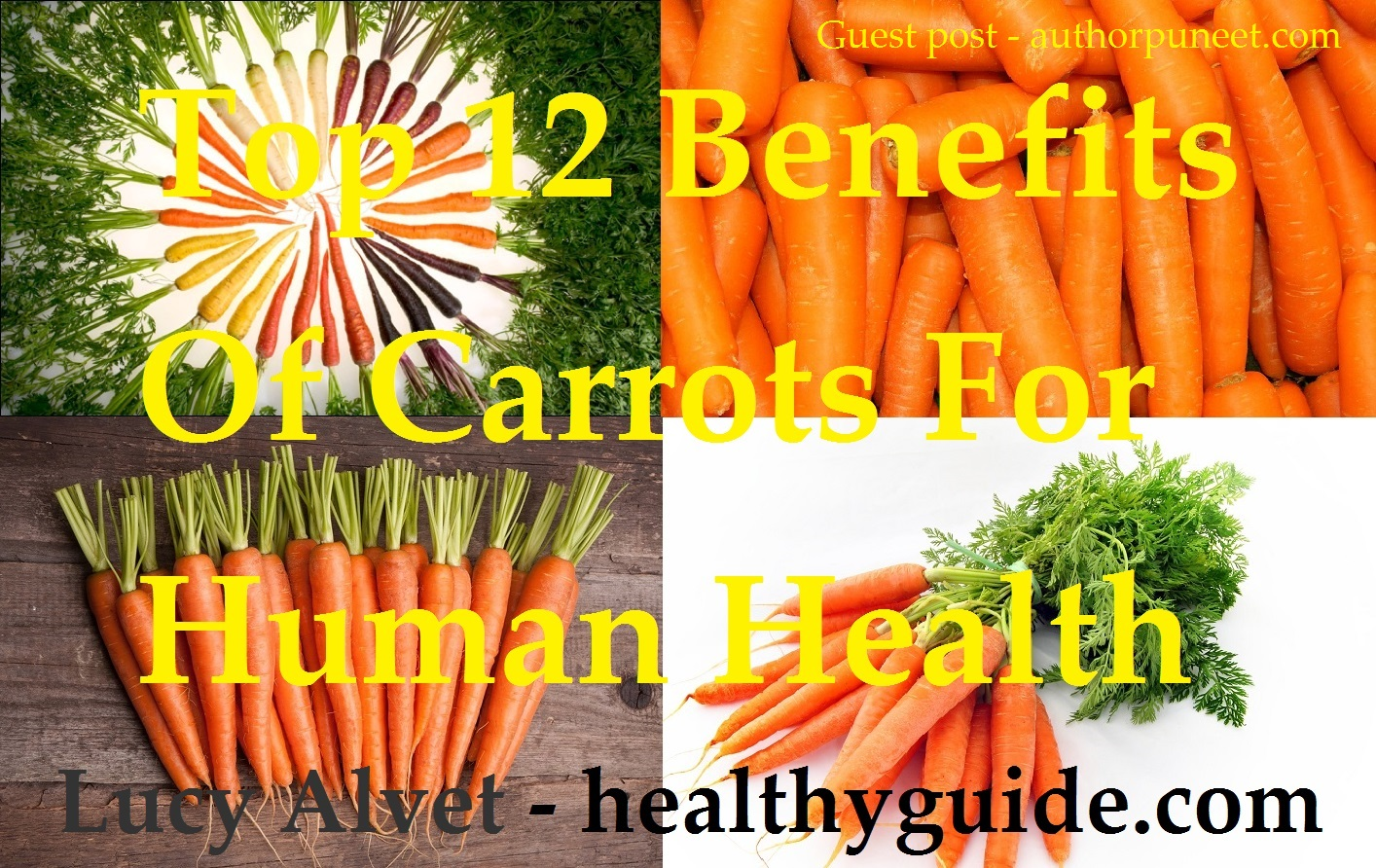 Carrot-color-arrangement